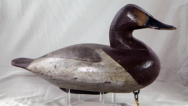 Scott Jackson Canvasback Hen in original paint from the Lew Pennock rig (as branded), circa 1900.
