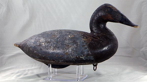 John B. Graham Canvasback hen, from the P.K. Barnes rig (as branded) circa 1880.