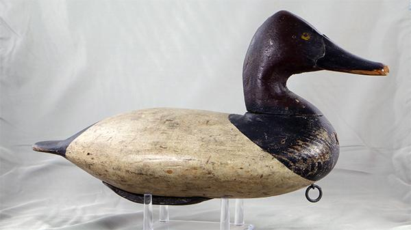 Will Heverin Canvasback drake in original paint, circa 1925.
