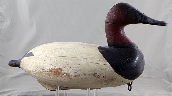 Will Heverin Canvasback drake high head model in original paint, circa 1925.